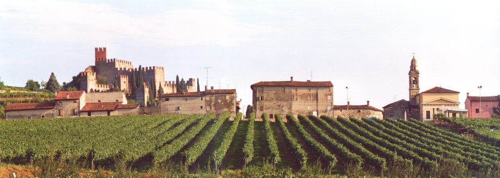 Italian Wine Basics